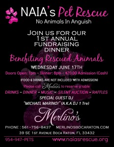 First Annual Fundraiser at Merlino's