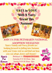 National Adoption Weekend @ PetSmart