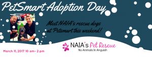 PetSmart Adoption Day