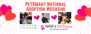 PetSmart's National Adoption Weekend